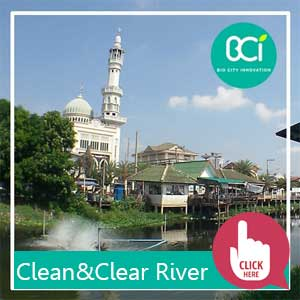 clean and clear river